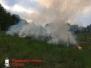 Flächenbrand, Albrecht-Thaer-Str. 21.05.16