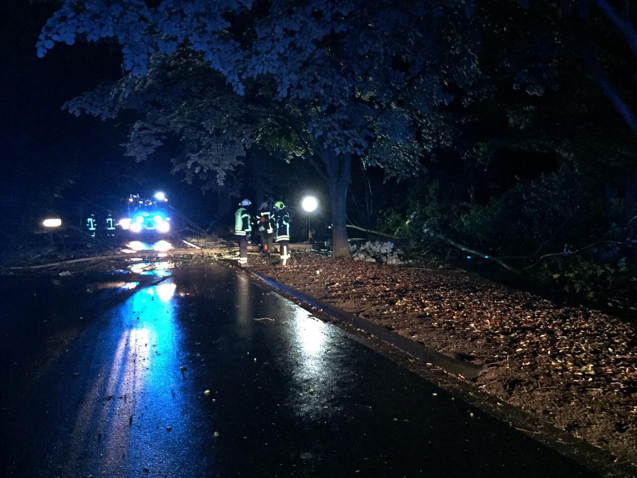 163. Sturmschaden / Baum auf Straße