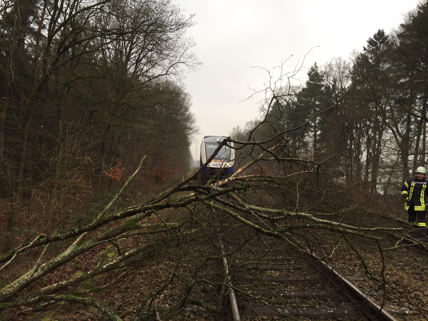 001. Baum auf Bahngleis