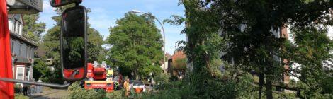 087. Hilfeleistung - - Baum droht auf Straße zu fallen