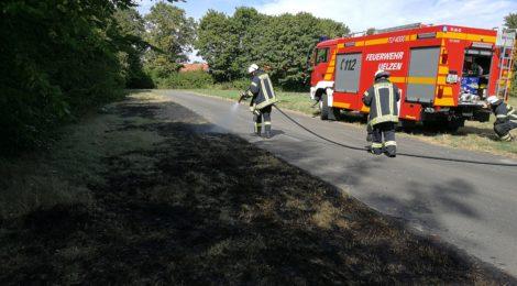 209. F1 - Flächenbrand